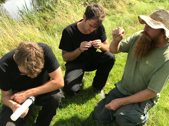 Water shrew and vole training day
