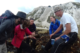 Marine volunteers carrying out a survey