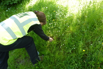 Volunteer plug planting on a Roadside Verge