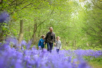 People and bluebells, photo by Tom Marshall