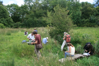 Field Identification Skills Certificate work and survey
