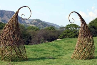 Whimsical Willow Weaving
