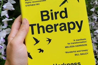 Cover of Joe Harkness's book, Bird Therapy