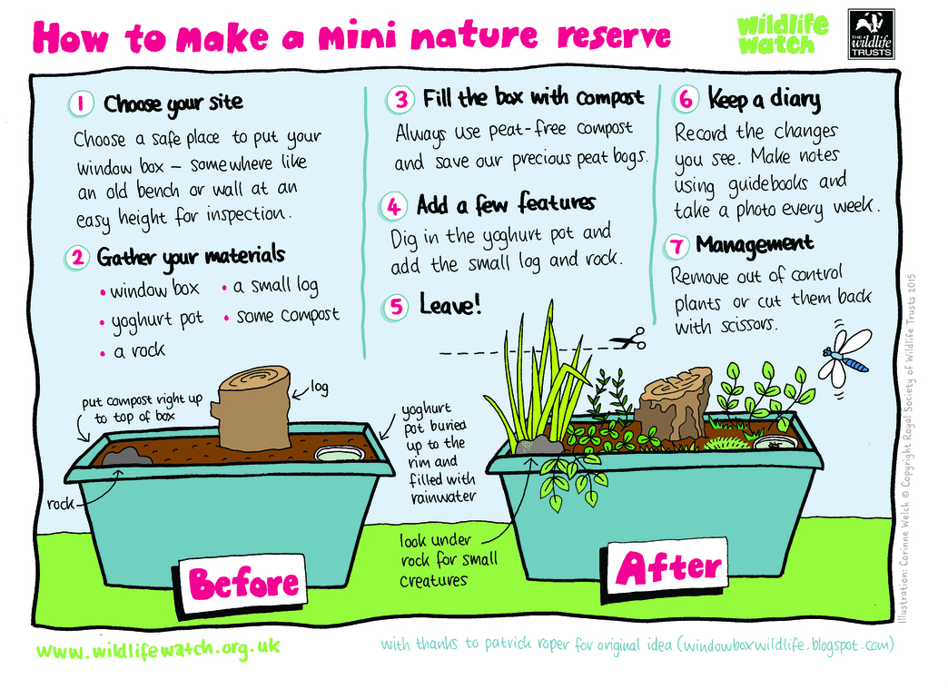 mini nature reserve