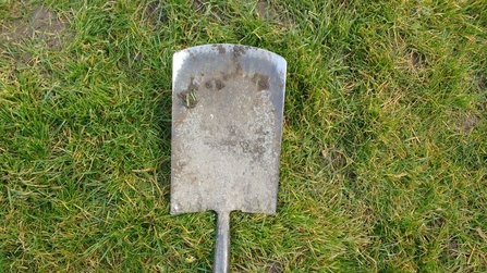 Spade for tree planting