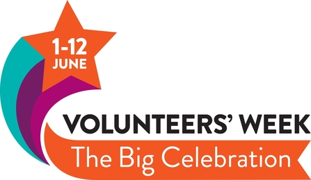 Volunteers' Week Logo