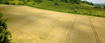 Arable land at Polhill Bank
