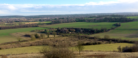The view from Polhill Bank