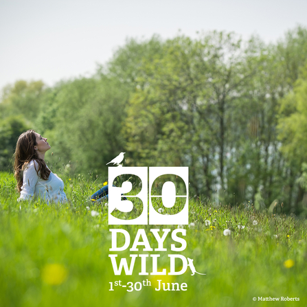 30 Days Wild laying in a meadow, photo by Matthew Roberts