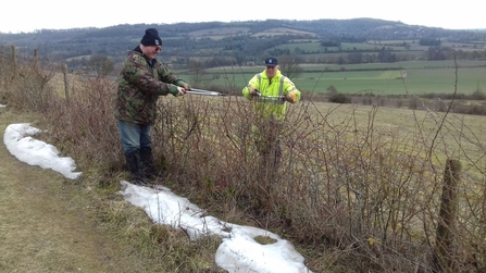 Hardy volunteers pruning a hedgerow in the snow