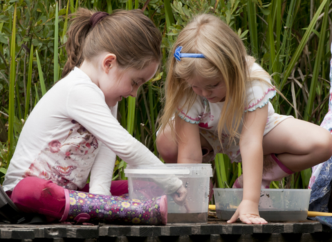 Children pond dipping, photo by Ross Hoddinott/2020VISION