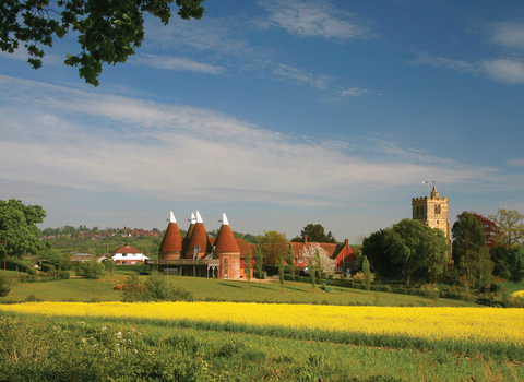 Oast house and rape oil seed