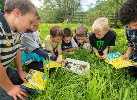 School children identifying minibeasts, photo by Ross Hoddinott/2020VISION