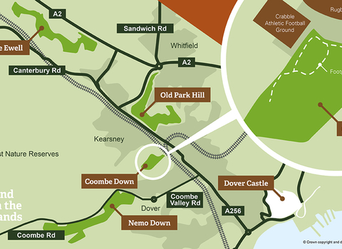 Coombe down map